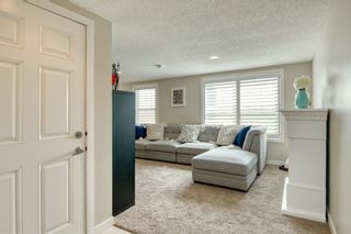 Photo 31: 22 Nolan Hill Heights NW in Calgary: Nolan Hill Row/Townhouse for sale : MLS®# A1101368