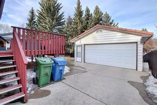 Photo 46: 515 Cedarille Crescent SW in Calgary: Cedarbrae Detached for sale : MLS®# A1083905