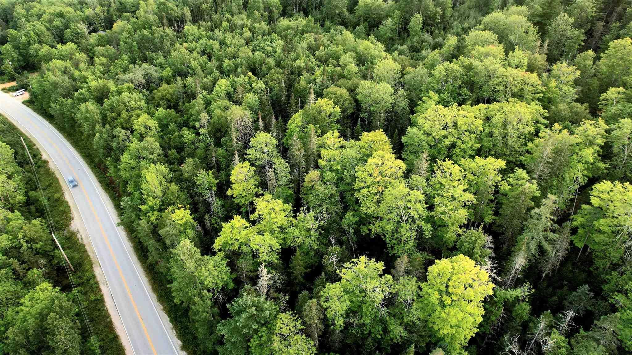 Main Photo: HWY 12 in New Ross: 405-Lunenburg County Vacant Land for sale (South Shore)  : MLS®# 202121133