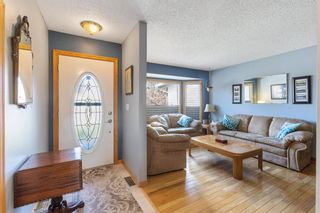 Photo 3: 31 Mchugh Place NE in Calgary: Mayland Heights Detached for sale : MLS®# A1111155