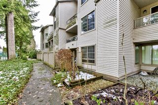 "Photo 14: 107 1955 SUFFOLK Avenue in Port Coquitlam: Glenwood PQ Condo for sale in ""OXFORD PLACE"" : MLS®# R2144804"