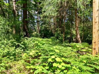Photo 7: 20 Pirate Pl in : Isl Protection Island Land for sale (Islands)  : MLS®# 878593