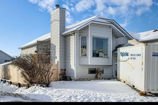 Main Photo: 163 Erin Meadow Green SE in Calgary: Erin Woods Detached for sale : MLS®# A1077161