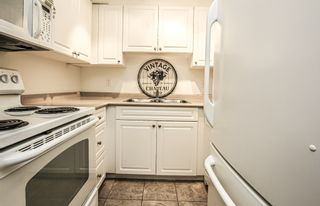 "Photo 8: 303 7471 BLUNDELL Road in Richmond: Brighouse South Condo for sale in ""Canterbury Court"" : MLS®# R2402160"