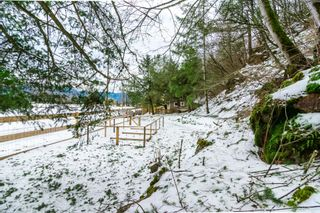 Photo 37: 4077 LAKEMOUNT Road in Abbotsford: Sumas Mountain House for sale : MLS®# R2229779