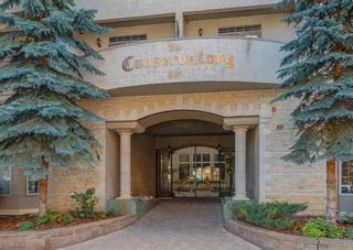 Photo 25: 224 527 15 Avenue SW in Calgary: Beltline Apartment for sale : MLS®# A1141714