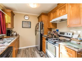 """Photo 16: 13 33900 MAYFAIR Avenue in Abbotsford: Central Abbotsford Townhouse for sale in """"Mayfair Gardens"""" : MLS®# R2563828"""