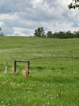 Photo 1: TWP 502 RR 215: Rural Leduc County Rural Land/Vacant Lot for sale : MLS®# E4249465