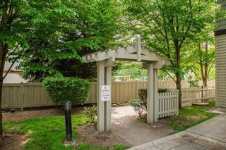 """Photo 4: 61 6747 203 Street in Langley: Willoughby Heights Townhouse for sale in """"SAGEBROOK"""" : MLS®# R2454928"""
