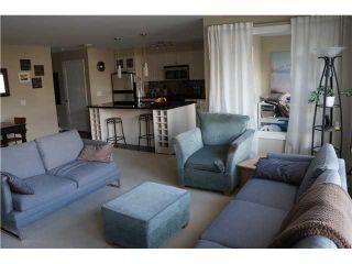 Photo 10: # 217 405 SKEENA ST in Vancouver: Renfrew VE Condo for sale (Vancouver East)  : MLS®# V1115002
