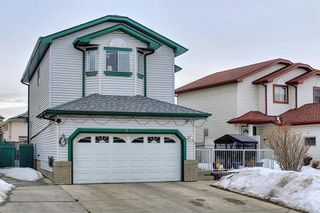 Photo 3: 813 Applewood Drive SE in Calgary: Applewood Park Detached for sale : MLS®# A1076322