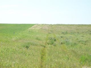 Photo 8: Eagle Creek Acreage 80 Acres in Asquith: Lot/Land for sale : MLS®# SK863384