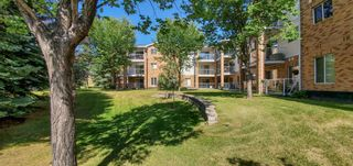 Photo 3: 110 165 MANORA Place NE in Calgary: Marlborough Park Apartment for sale : MLS®# A1028754