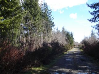 Photo 4: Lot 20 Lory Road: Land Only for sale : MLS®# 210593
