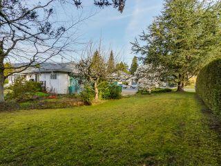 Photo 15: 925 HANDSWORTH Road in North Vancouver: Forest Hills NV House for sale : MLS®# V1110371