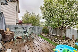 Photo 29: 46 Country Hills Rise NW in Calgary: Country Hills Detached for sale : MLS®# A1104442