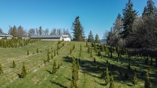 """Photo 1: 31945 GLENMORE Road in Abbotsford: Matsqui Land for sale in """"DOWNES RD"""" : MLS®# R2565768"""