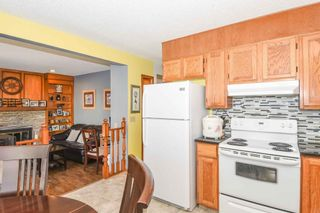 Photo 24: 1244 Berkley Drive NW in Calgary: Beddington Heights Detached for sale : MLS®# A1118414