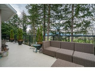 Photo 36: 35704 TIMBERLANE Drive in Abbotsford: Abbotsford East House for sale : MLS®# R2148897