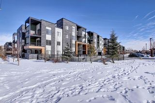 Photo 27: 1214 1317 27 Street SE in Calgary: Albert Park/Radisson Heights Apartment for sale : MLS®# A1070398