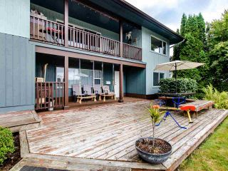 """Photo 22: 21763 48 Avenue in Langley: Murrayville House for sale in """"MURRAYVILLE"""" : MLS®# R2485267"""