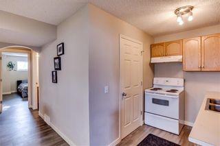 Photo 39: 26 Saddlemont Way NE in Calgary: Saddle Ridge Detached for sale : MLS®# A1103479
