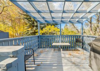 Photo 33: 7 River Rock Place SE in Calgary: Riverbend Detached for sale : MLS®# A1152980