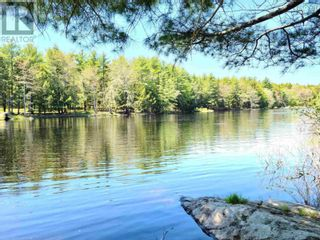 Photo 11: Medway River Road in Bangs Falls: Vacant Land for sale : MLS®# 202122898