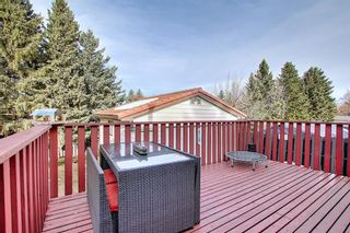 Photo 42: 515 Cedarille Crescent SW in Calgary: Cedarbrae Detached for sale : MLS®# A1083905
