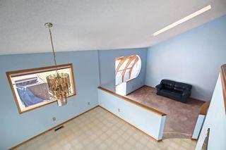 Photo 30: 29 Namaka Drive: Namaka Detached for sale : MLS®# A1142156
