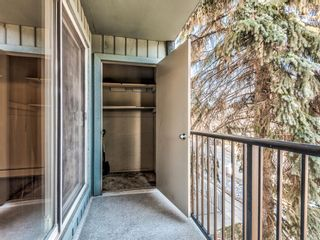 Photo 29: 202 1603 26 Avenue SW in Calgary: South Calgary Apartment for sale : MLS®# A1100163
