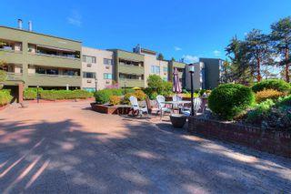 Photo 20: 219 1056 Bernard Avenue in Kelowna: Kelowna North House for sale (Central Okanagan)  : MLS®# 10239718