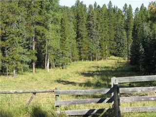 Photo 6: WEST OF BOTTREL in COCHRANE: Rural Rocky View MD Rural Land for sale : MLS®# C3492220