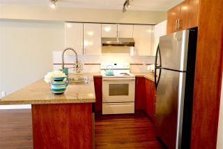 Photo 6: 206 14960 102A AVENUE in Surrey: Guildford Condo for sale (North Surrey)  : MLS®# R2457466