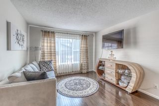 Photo 7: 262 Copperstone Circle SE in Calgary: Copperfield Detached for sale : MLS®# A1136994