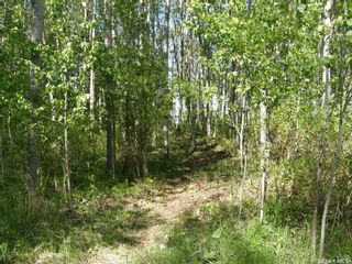 Photo 7: Lot 10 Delaronde Way in Delaronde Lake: Lot/Land for sale : MLS®# SK851495