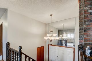 Photo 26: 203 Range Crescent NW in Calgary: Ranchlands Detached for sale : MLS®# A1111226