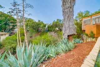 Photo 22: CITY HEIGHTS House for sale : 3 bedrooms : 2642 Snowdrop Street in San Diego