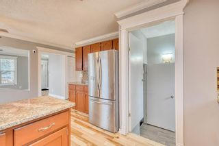Photo 23: 355 Whitman Place NE in Calgary: Whitehorn Detached for sale : MLS®# A1046651