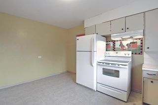 Photo 17: 1936 Matheson Drive NE in Calgary: Mayland Heights Detached for sale : MLS®# A1130969