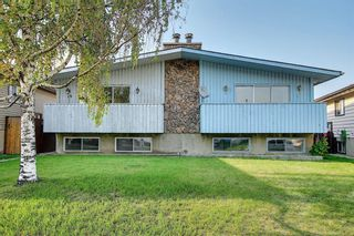 Main Photo: 17 DOVERVILLE Way SE in Calgary: Dover Semi Detached for sale : MLS®# A1132278