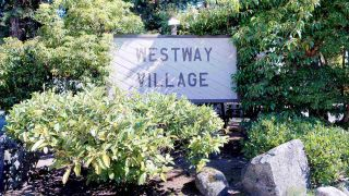 "Photo 21: 73 38181 WESTWAY Avenue in Squamish: Valleycliffe Condo for sale in ""Westway"" : MLS®# R2560255"