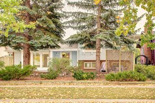 Photo 42: 248 Midlake Boulevard SE in Calgary: Midnapore Detached for sale : MLS®# A1144224
