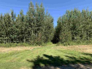 Photo 4: TBD Crystal Key Crescent: Rural Wetaskiwin County Rural Land/Vacant Lot for sale : MLS®# E4212671