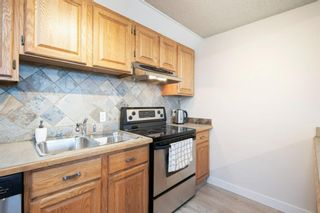 Photo 12: 1206P 1334 13 Avenue SW in Calgary: Beltline Apartment for sale : MLS®# A1075393