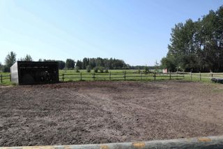 Photo 19: 461028 RR 74: Rural Wetaskiwin County House for sale : MLS®# E4252935