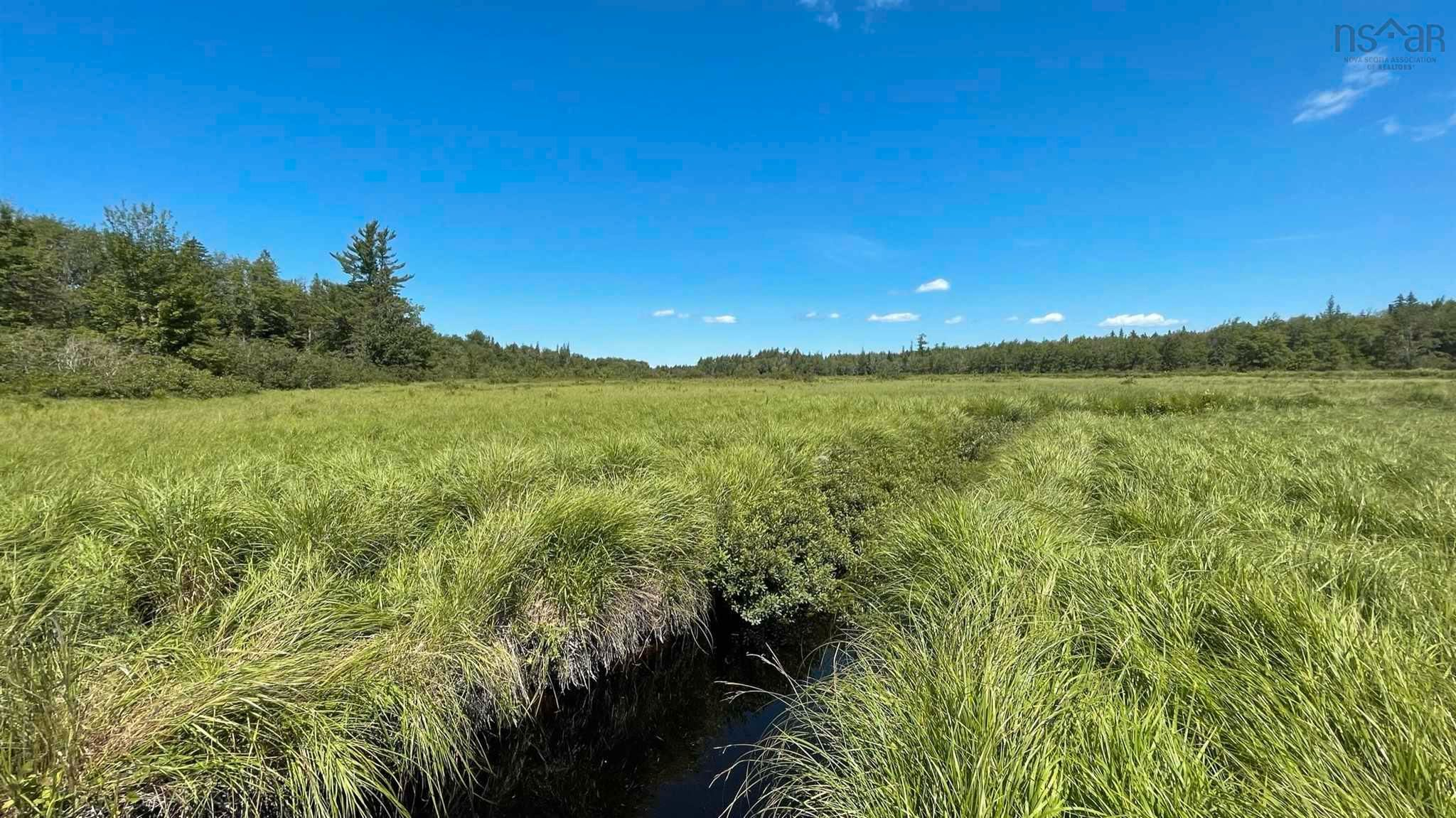 Main Photo: Lot New Albany in New Albany: 400-Annapolis County Vacant Land for sale (Annapolis Valley)  : MLS®# 202120180
