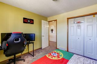 Photo 30: 216 Coral Shores Court NE in Calgary: Coral Springs Detached for sale : MLS®# A1116922