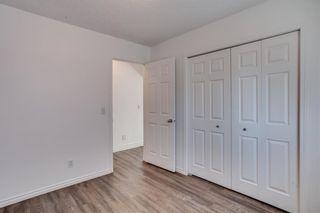 Photo 34: 26 Saddlemont Way NE in Calgary: Saddle Ridge Detached for sale : MLS®# A1103479