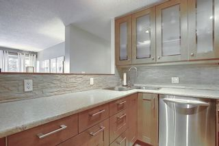 Photo 10: 78D 231 HERITAGE Drive SE in Calgary: Acadia Apartment for sale : MLS®# C4305999